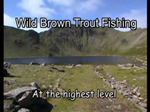 Trout Fishing in Red Tarn (at altitude)